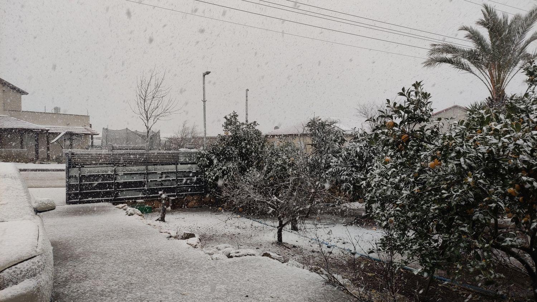שלג בדלתון